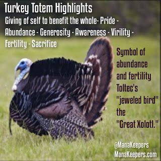 Turkey Totem Quick Reference Blog Post: Rebirth, Abundance, Fertility,  Autumn. Native Americans viewed the turkey as a s…   Totem, Animal symbolism,  Animal medicine