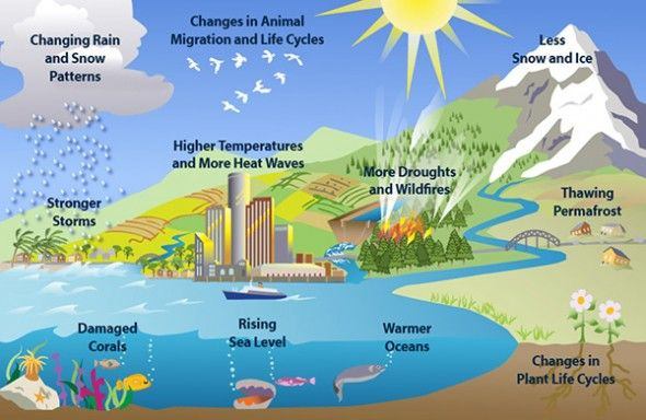 Difference Between Climate Change And Global Warming What Is