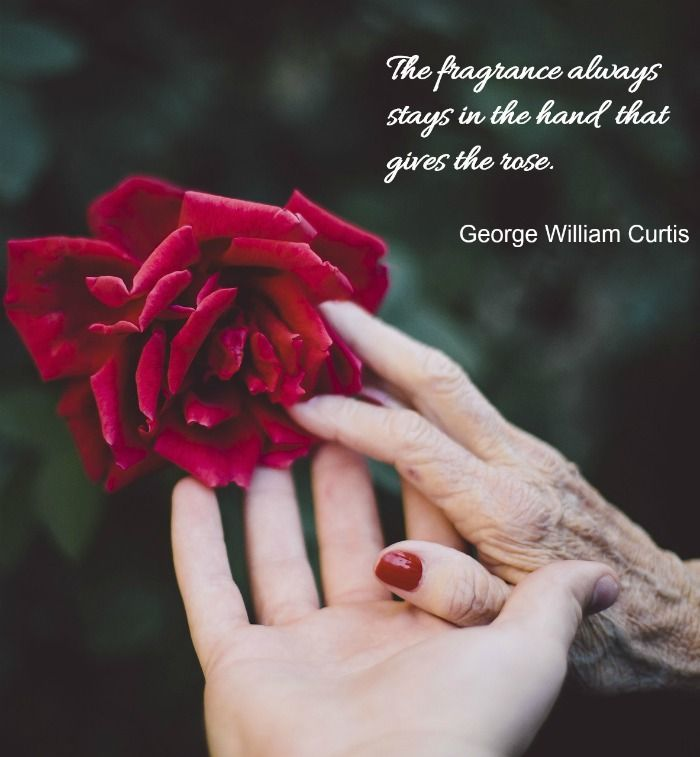 Image result for the fragrance always stays in the hand that gives the rose