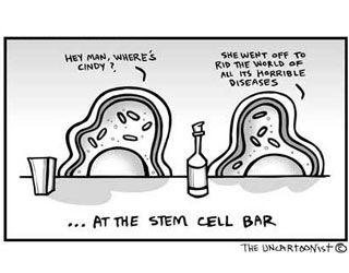 Stem Cell Cartoon | Adult Stem Cells | Pinterest | Cartoon