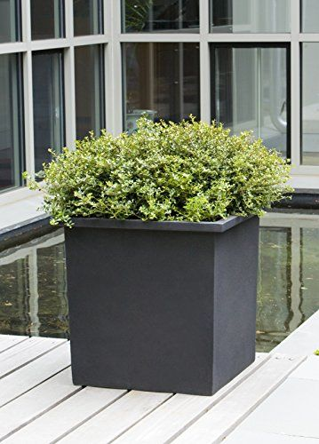 Campania International 94-650-13900 Bardo Square Planter,... https://smile.amazon.com/dp/B01MXTTNZX/ref=cm_sw_r_pi_dp_x_I195yb92AASXC