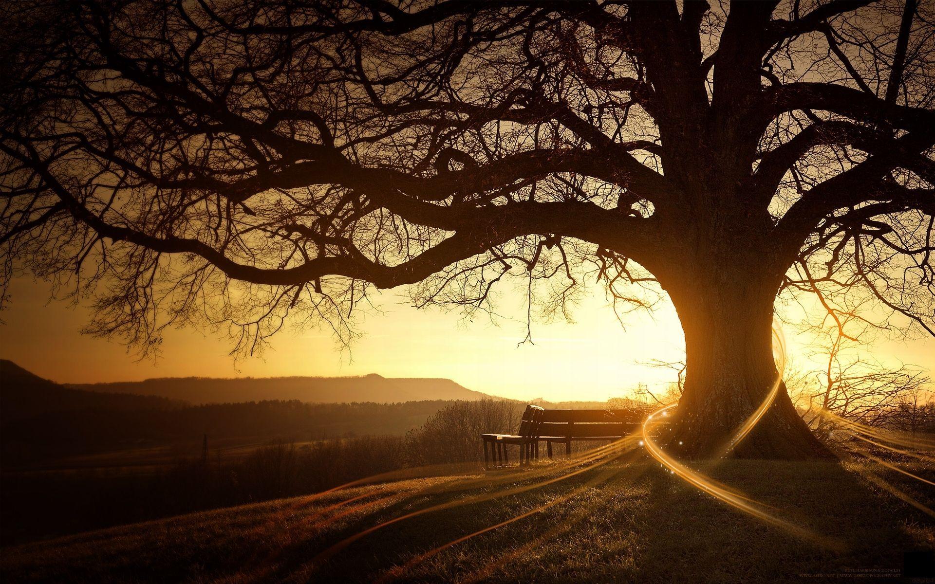 Sunset Fond Ecran Paysage Belle Nature Coucher De Soleil