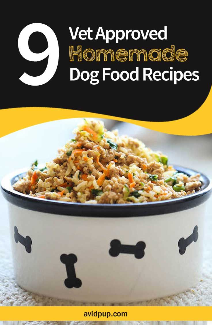 9 Vet Approved Homemade Dog Food Recipes for a Thriving Pup