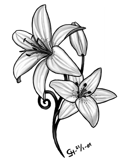 8b5f781d8 Lily Tattoo by ~Black-petal on deviantART | Art | Tiger lily tattoos ...