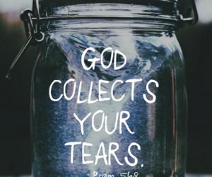 The collector   via Tumblr