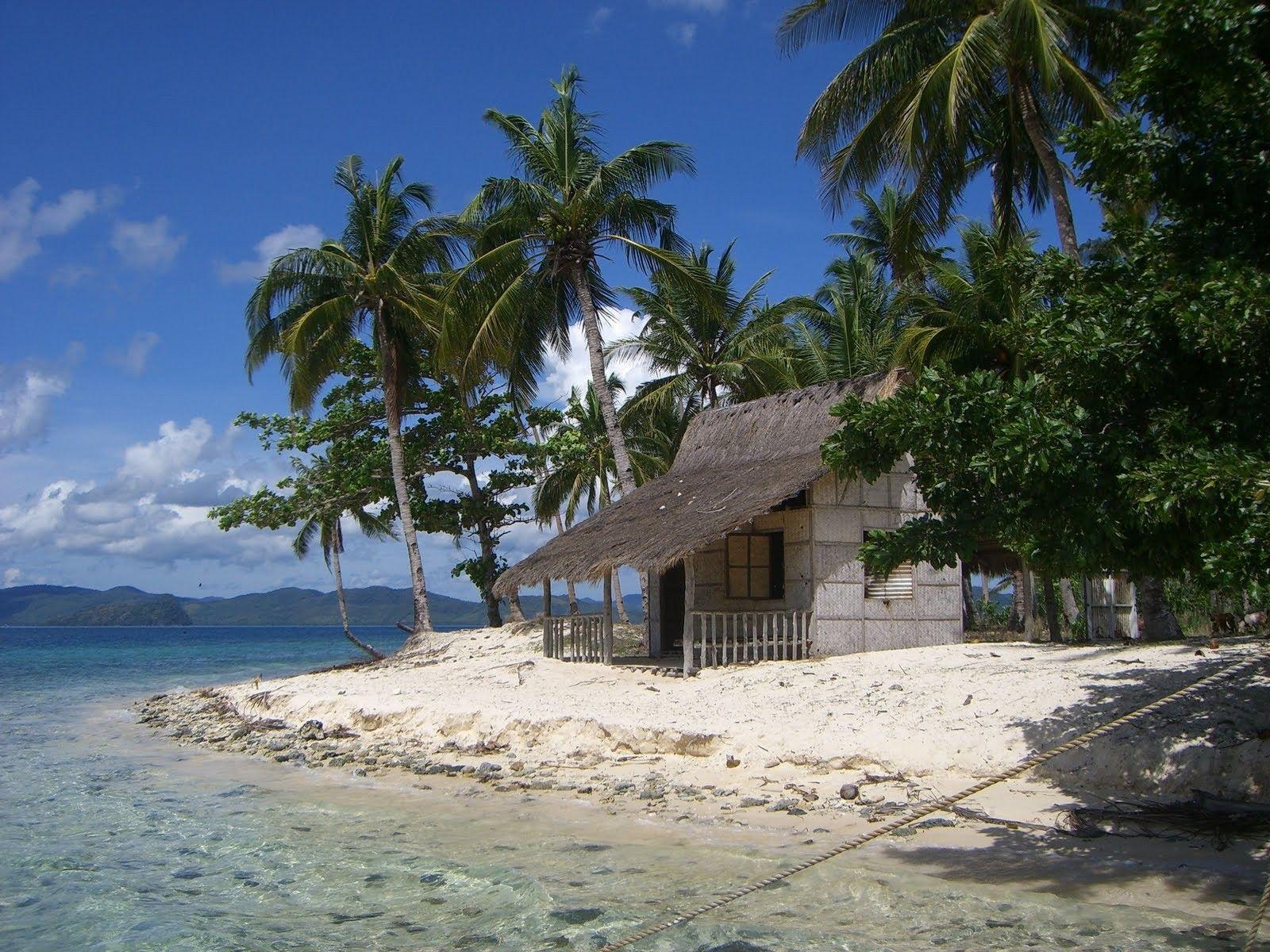 Tropical Island Beach Hut: Island Hut In The Philippines
