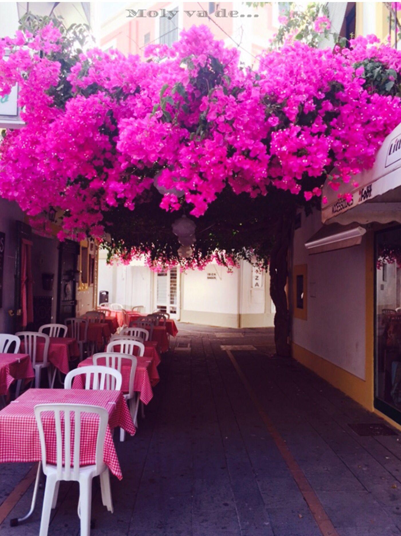 Pero existe otra #Ibiza que explota de color! #Fiesta #Vacacionesdeverano #Molyvade...#viaje #Islabonita #Holidays #Summer #Party #Paradise  molyvade.blogspot.com