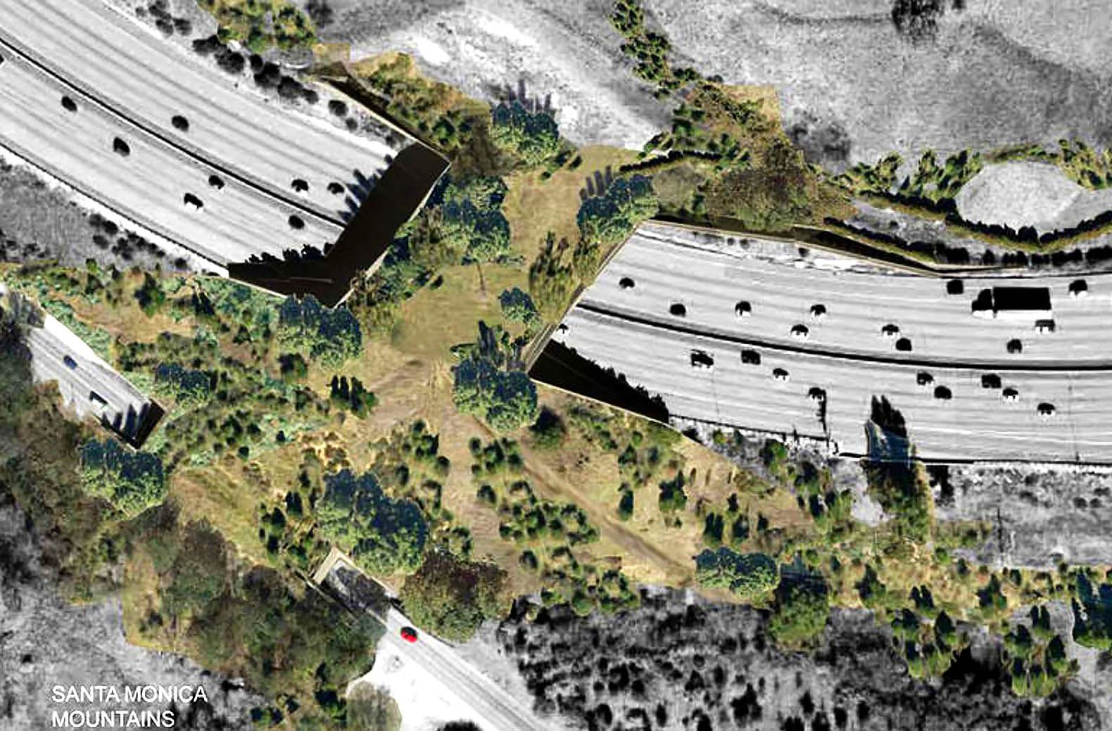 Largest wildlife overpass in the us proposed for los