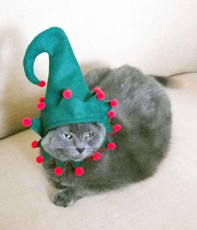 Pet Elf Costume - Cat or Small Dog Elf Costume - Christmas Costume Cat Costume. & Pet Elf Costume - Cat or Small Dog Elf Costume - Christmas Costume ...