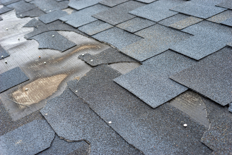 Beaverton Contractors Roof Shingles Roof Damage Roof Repair