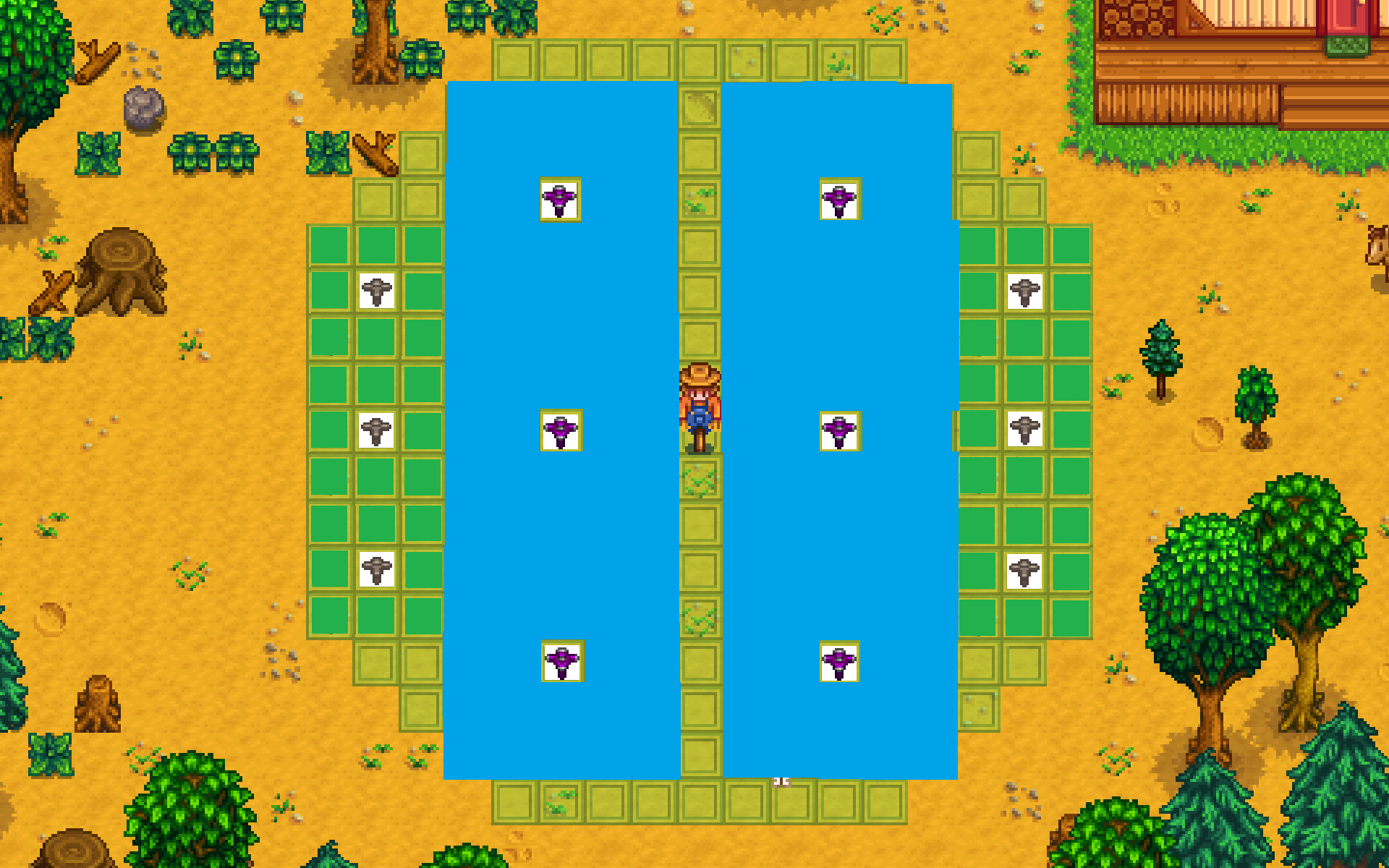 Stardew Valley sprinkler layout | Stardew valley, Stardew valley ...