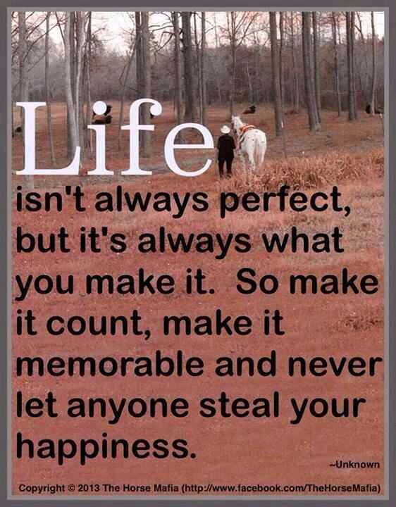 Life Isn T Always Perfect But It S Always What You Make It So Make It Count How To Memorize Things Inspirational Quotes Pictures Inspiring Quotes About Life