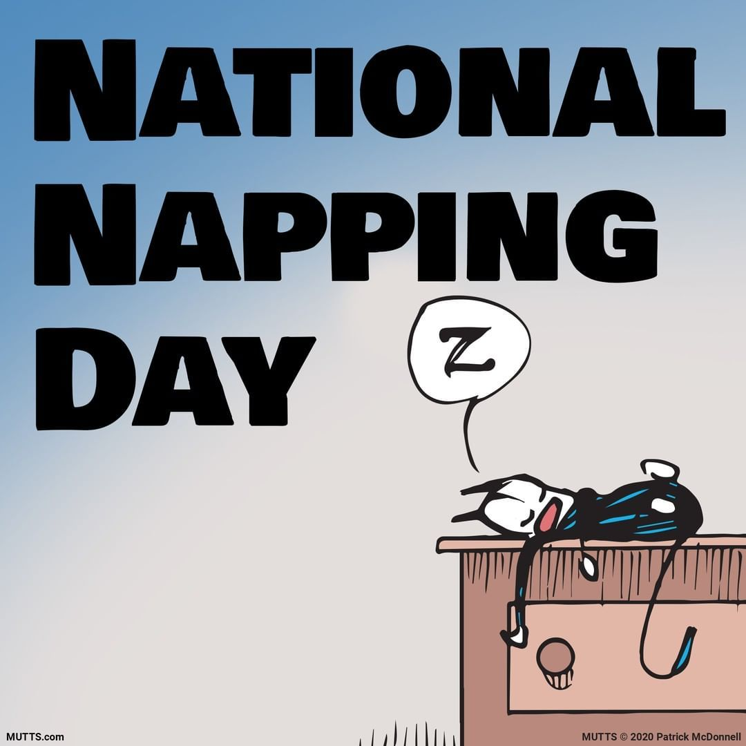 "MUTTS on Instagram ""Always a shame when National Napping"