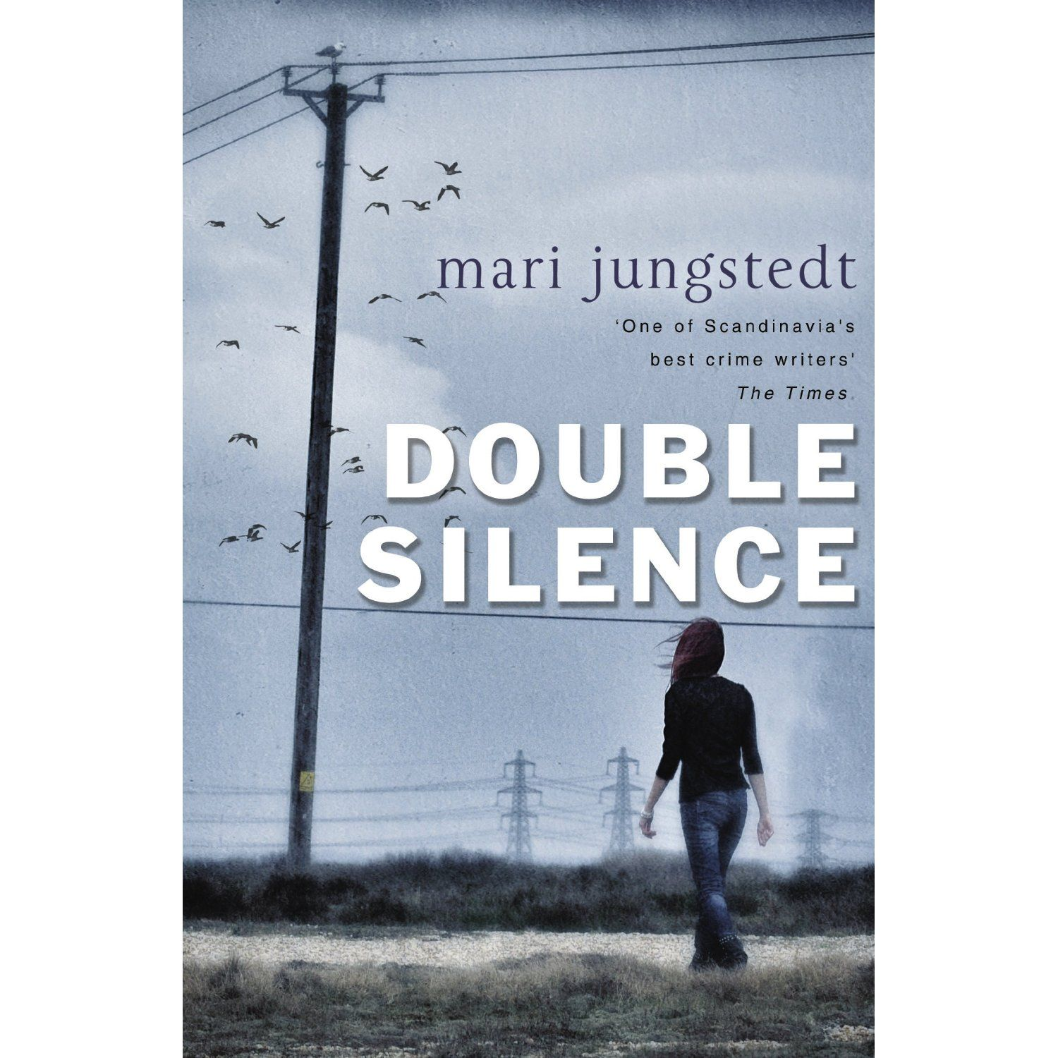 Mari Jungstedt Double Silence Inspector Anders Knutas Mysteries Book 7 Books Book Worth Reading Books Australia