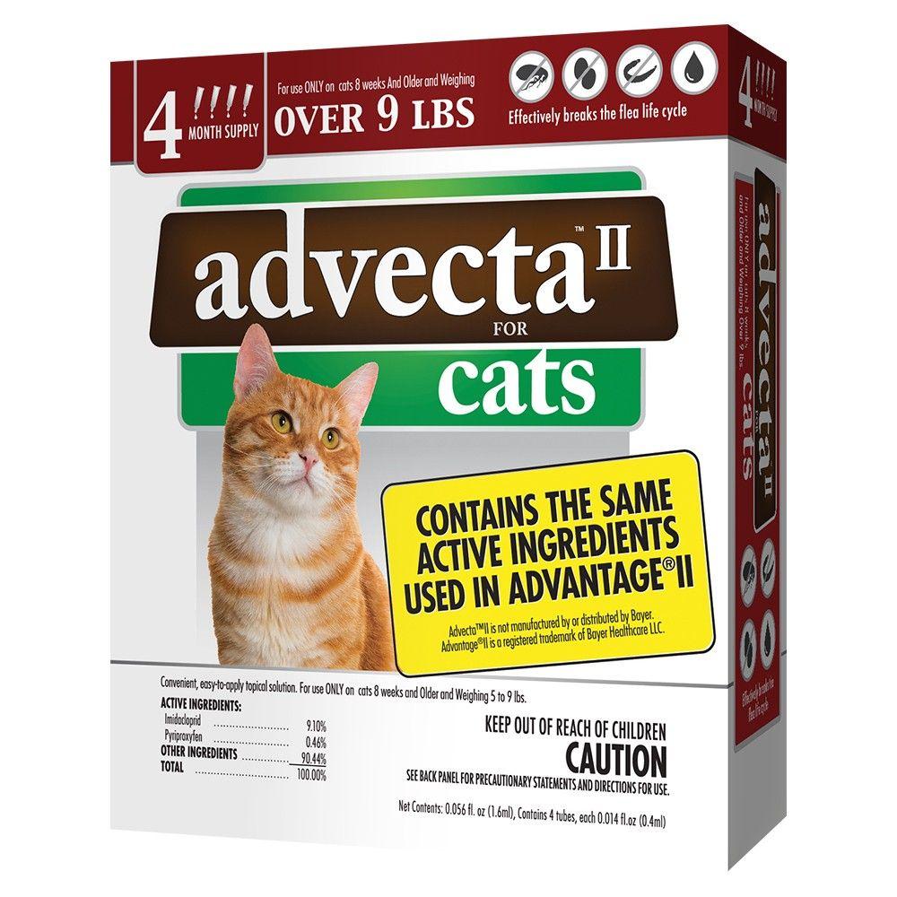 Advecta II Flea Drops for Large Cat 4ct in 2019 Cat