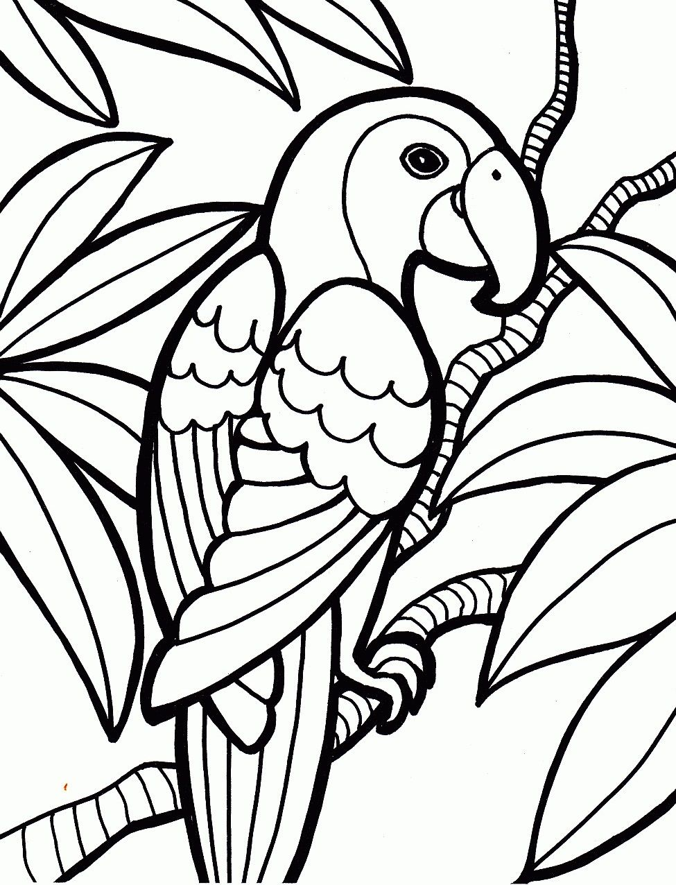 Parrot Birds Coloring Pages For Kids Tw Printable Birds Coloring Pages For Kids Maleboger Dyr Tegninger