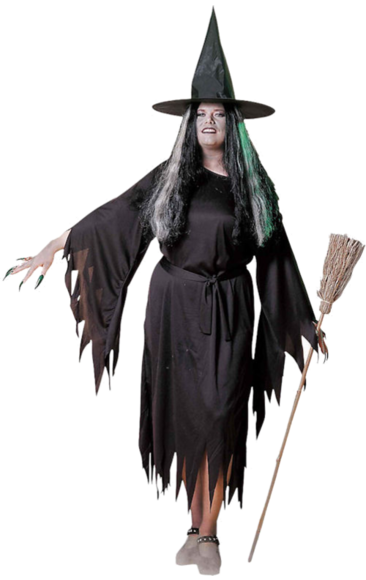 Traditional Witch Costume (plus Size) | Jokers Masquerade  sc 1 st  Pinterest & Elegant Witch Costume (Plus Size) | Pinterest | Witch costumes ...