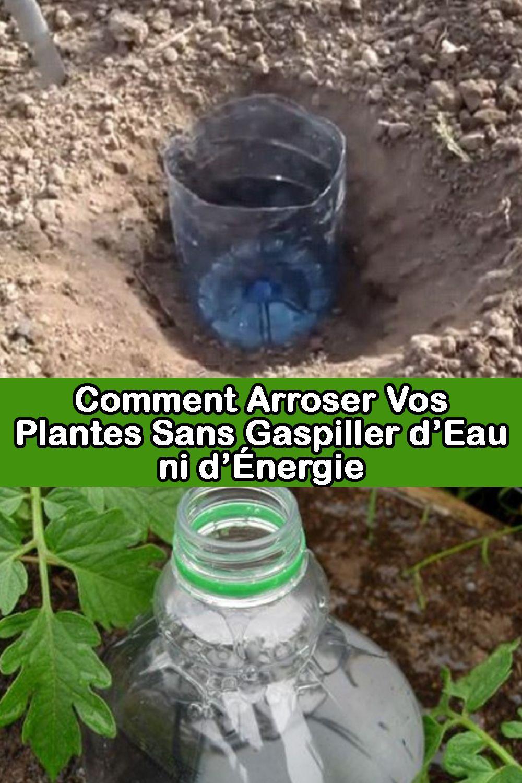 Arrosage Pour Plantes En Pot cette technique permet de ne pas arroser manuellement vos
