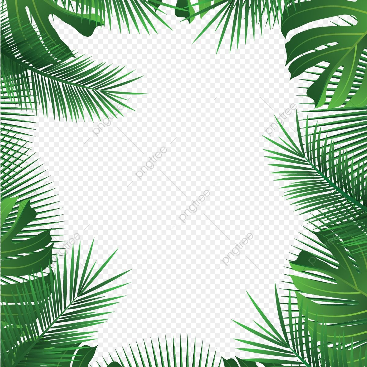 Tropical Leaves Frame Palm Summer Leaves Tropical Vector Png And Vector With Transparent Background For Free Download Tropical Frames Flower Frame Tropical Leaves