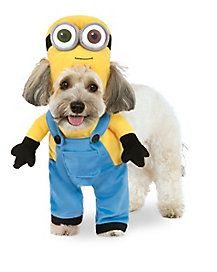Bob Minion Dog Costume - Despicable Me | Mr. Jack Mac Leash Mrs ...