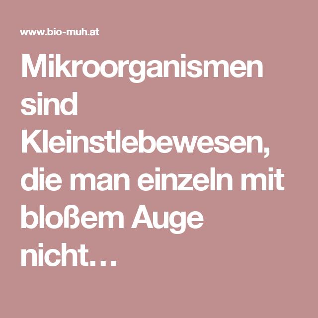 Mikroorganismen sind Kleinstlebewesen, die man einzeln mit bloßem Auge nicht…