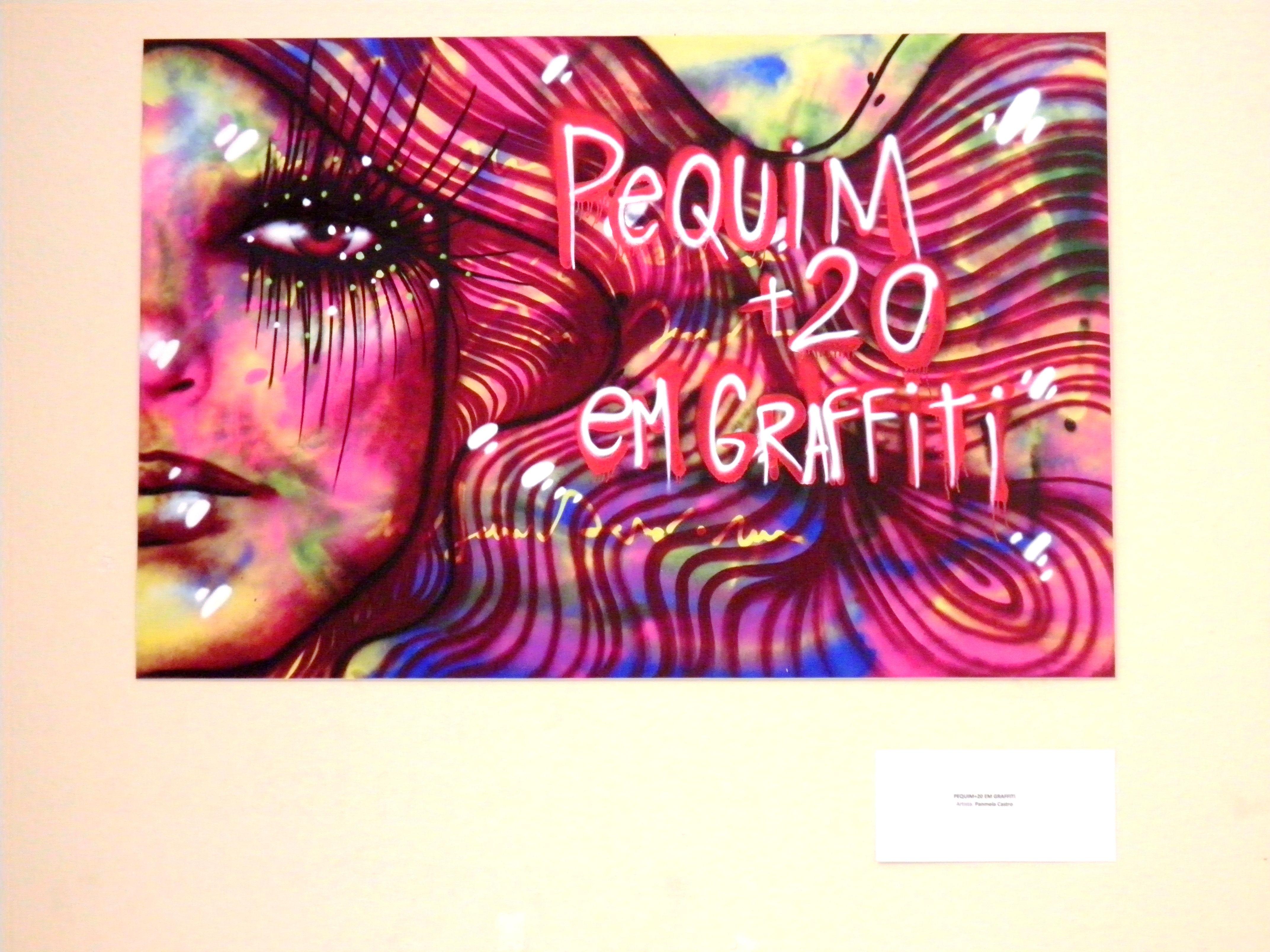 Exposição Pequim +20 em graffiti. Novembro, 2014, CEDIM, Rio de janeiro.