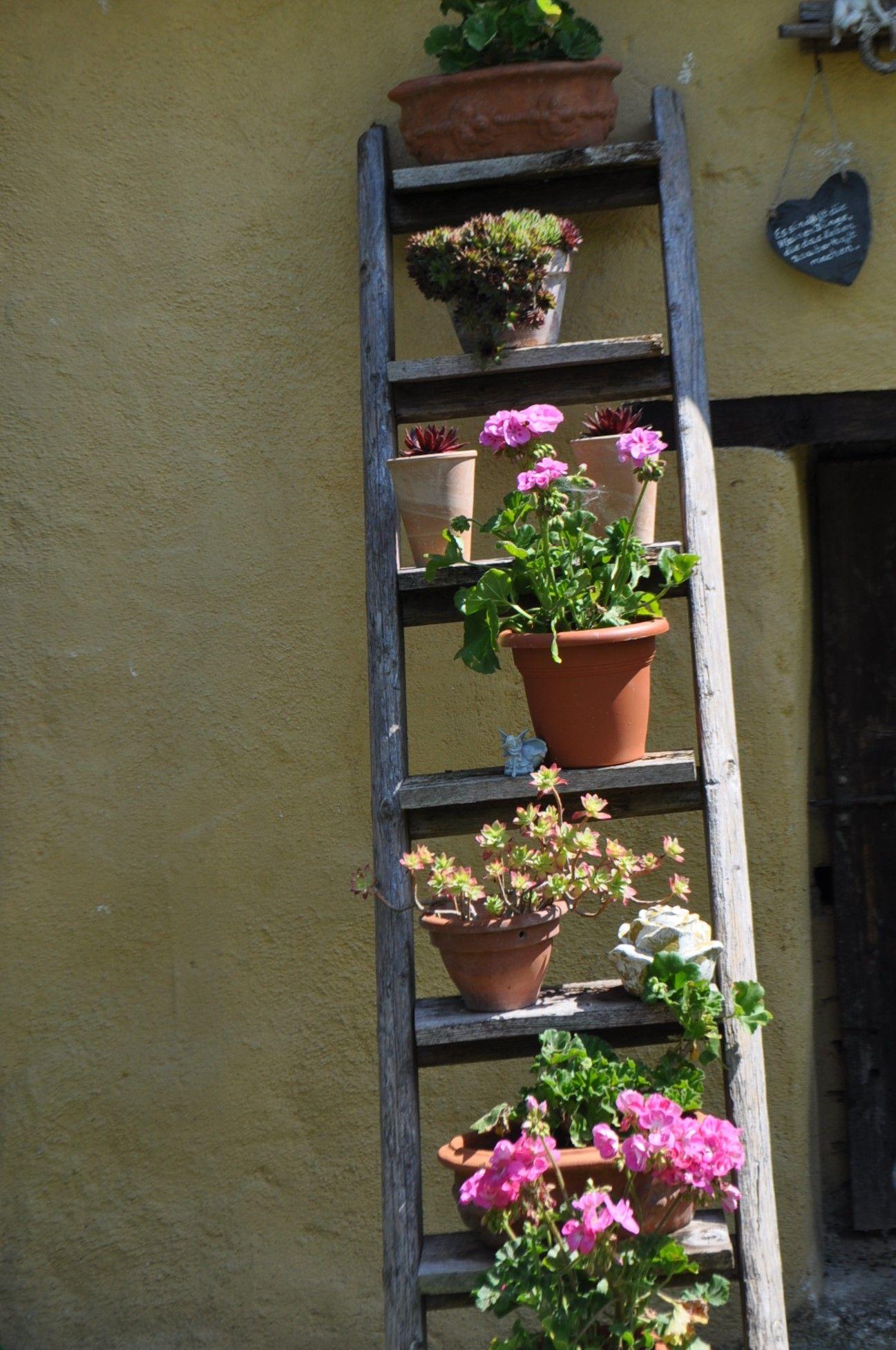 Einzigartig Gartendeko Kaufen Schema