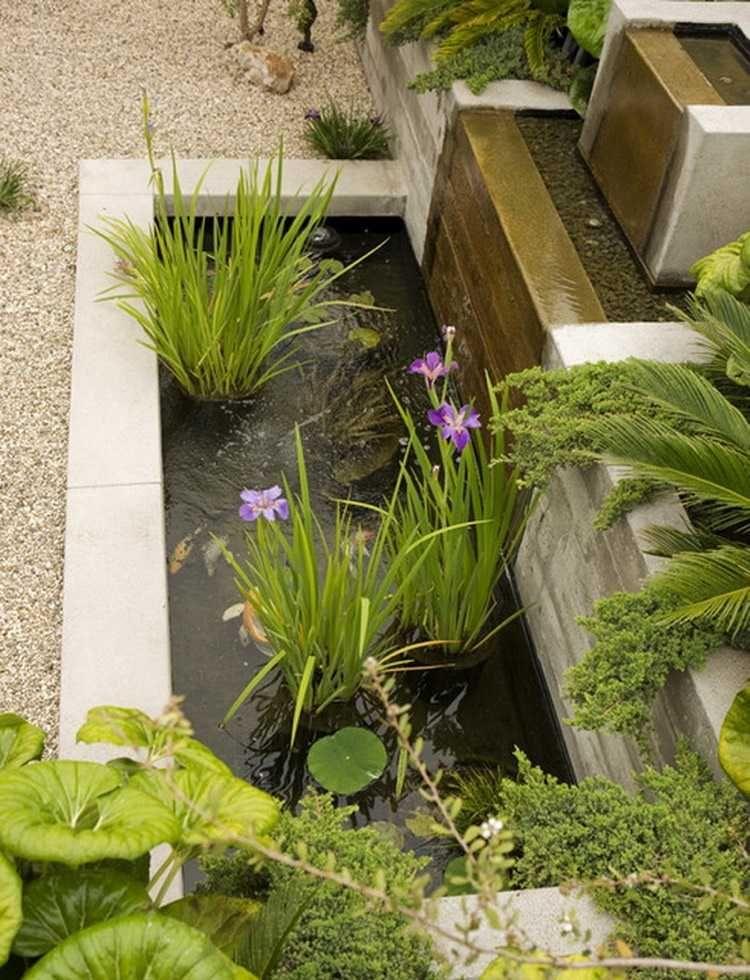 Étang de jardin moderne pour héberger les poissons et embellir l ...