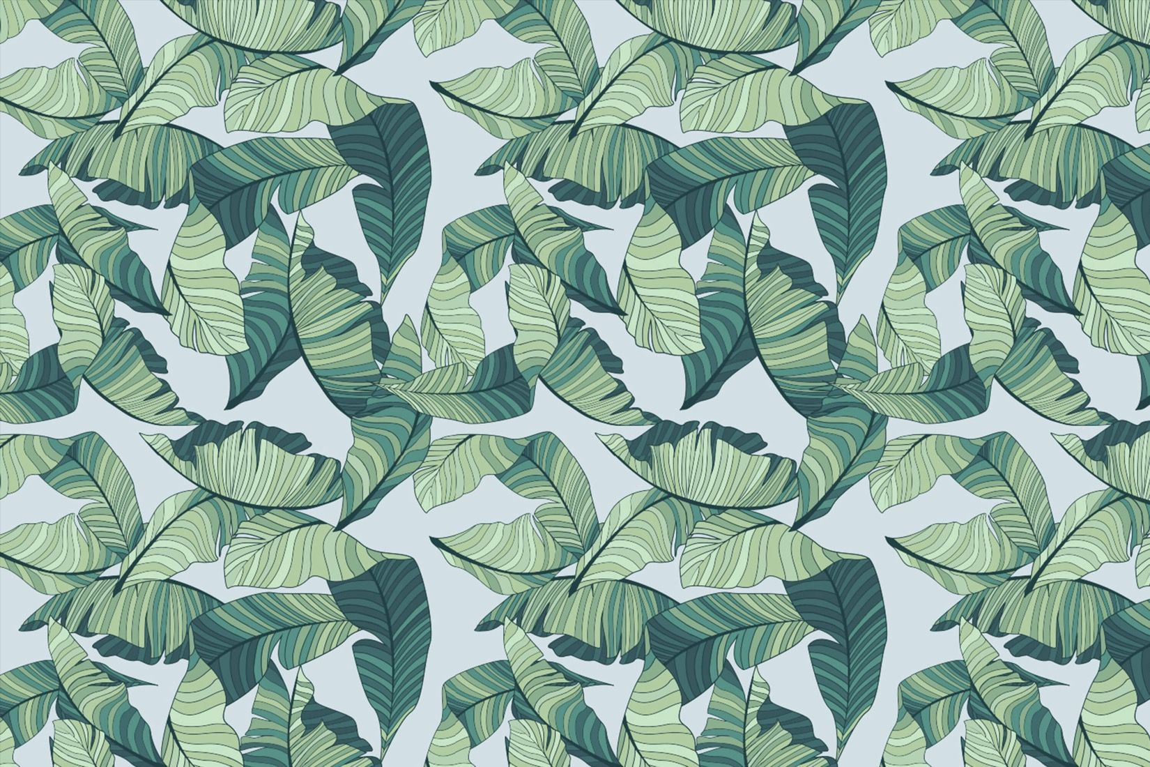 Blue and Green Tropical Leaf Wallpaper Tropical