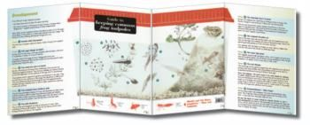 'Guide to Keeping Common Frog Tadpoles' - These all-weather fold-out reference guides are perfect for those seeking to learn more about UK species. Used by children, walkers and professionals alike.  This guide covers raising tadpoles from frogspawn and releasing tiny frogs back into the wild.