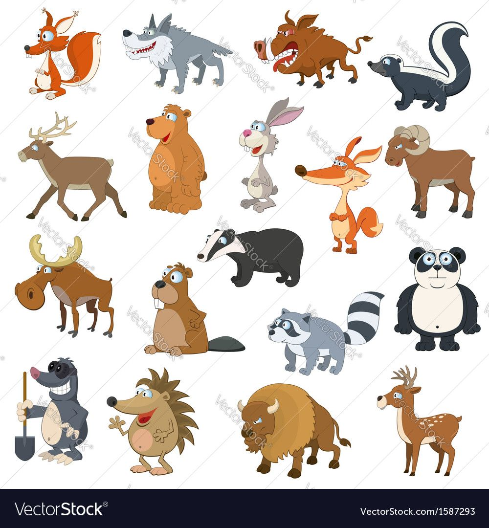 10+ Free Medical Clipart For Animals