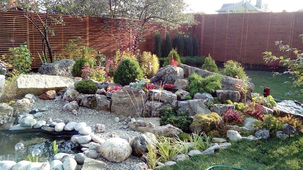 Оформление сада (47 фото) в 2020 г | Сад камней, Идеи для ...