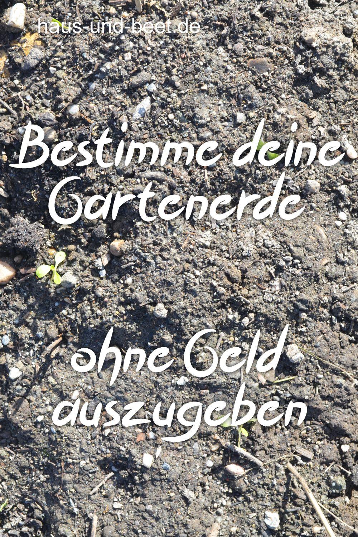 Lege dein Gemüsebeet morgen an, trotz wenig Erfahrung - Haus und Beet #kräutergartenpalette