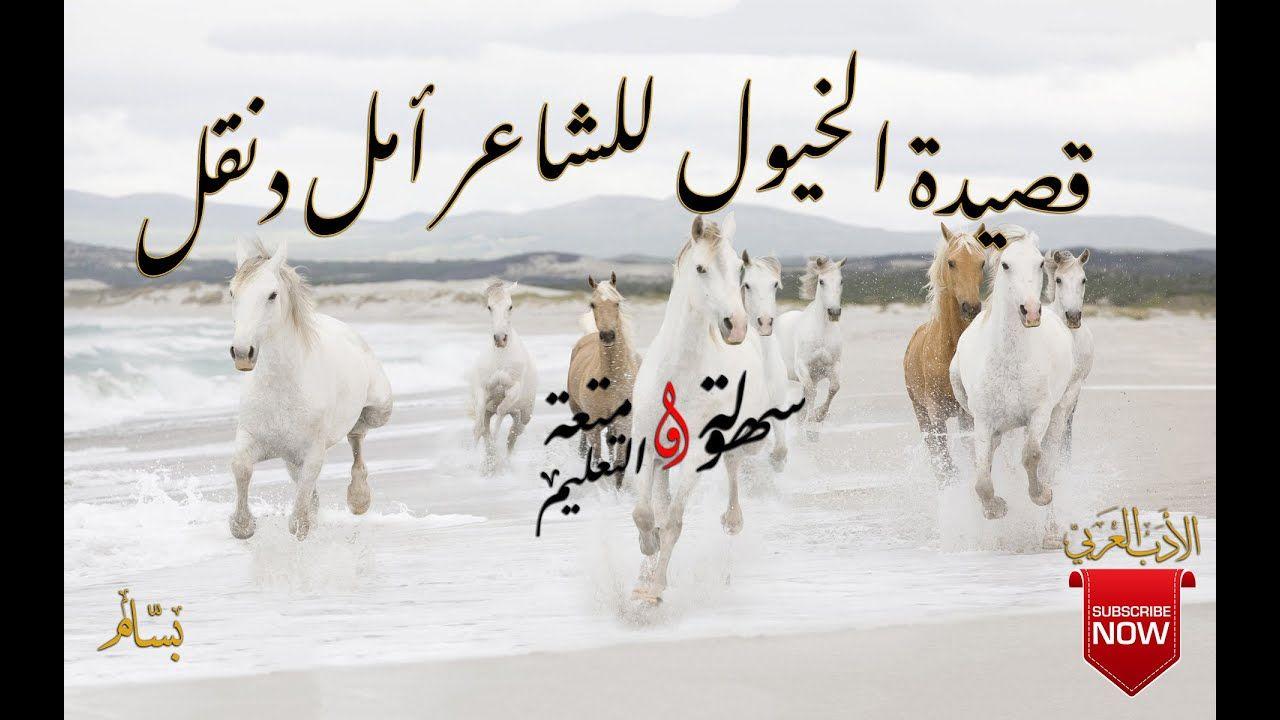 قصيدة الخيول للشاعر أمل دنقل