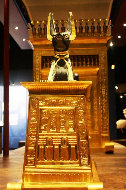 The Curse Of King Tuts Tomb Torrent: King Tut Treasures