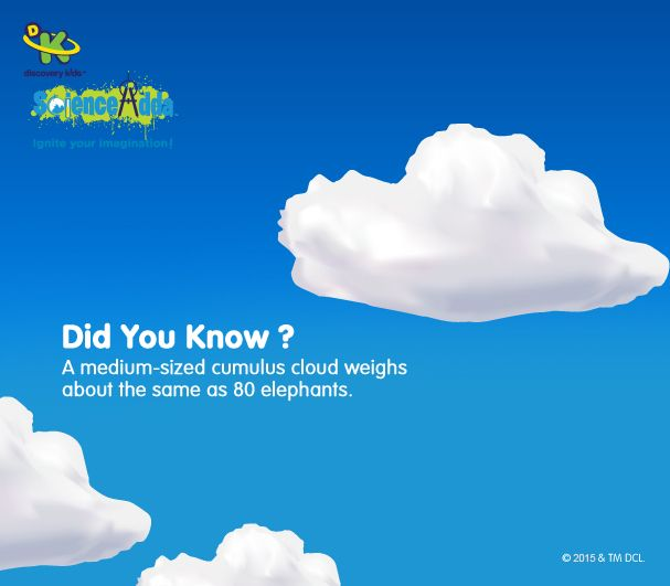 On an outer appearance clouds look like fluffy balls of cotton, who would weigh next to nothing. Actually, the fact is quite different from what we assume. A good sized cumulus cloud might be ten kilometers tall and a base of 10 km in diameter while a medium size weighs the size of 80 elephants!