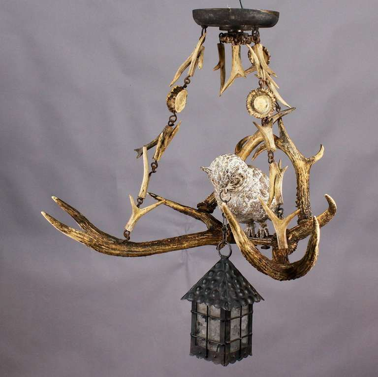 Antique Black Forest Antler Chandelier With Owl Statue | Antlers ...
