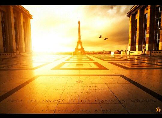 Golden Hour Paris.