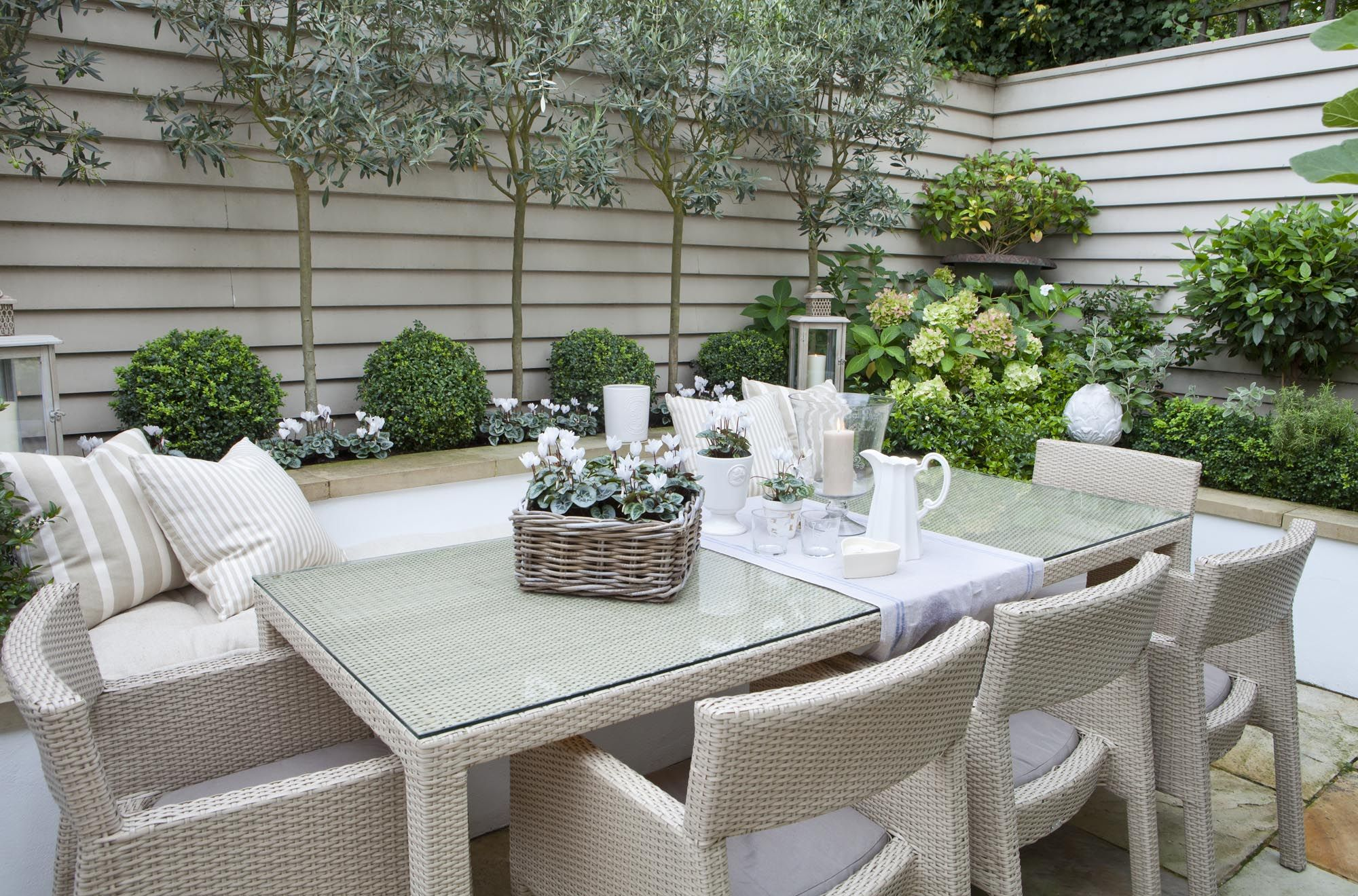 Leopoldina Haynes Garden olive trees and dining outdoor, love the walls Outdoor landscape  ~ 22210404_Kleine Garten Modern Gestalten