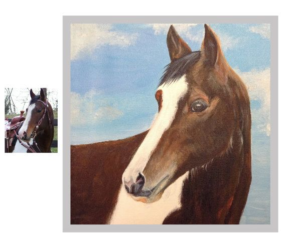 Custom horse portrait pet painting on canvas oil and acrylic original from photo 12 x 12 animal portrait