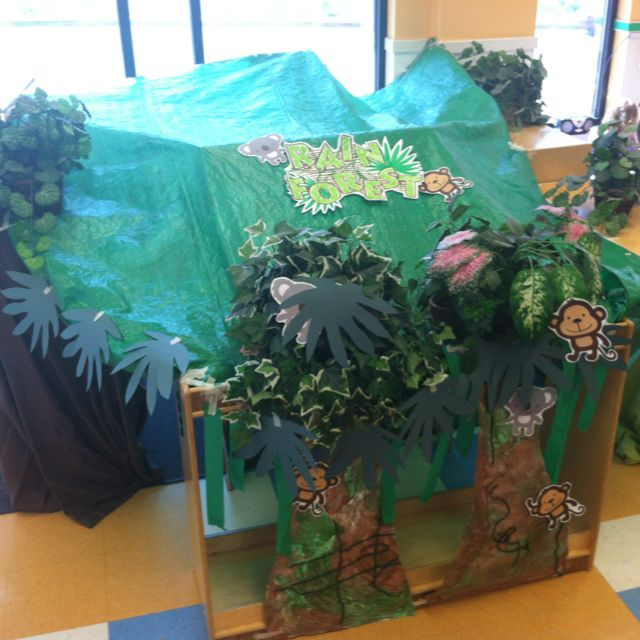 Dramatic play enrichment rain forest teaching ideas for Jungle themed playroom