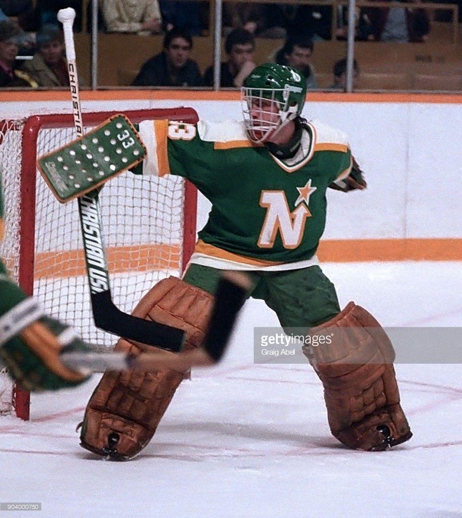 Don Beaupre Minnesota north stars, Hockey, National