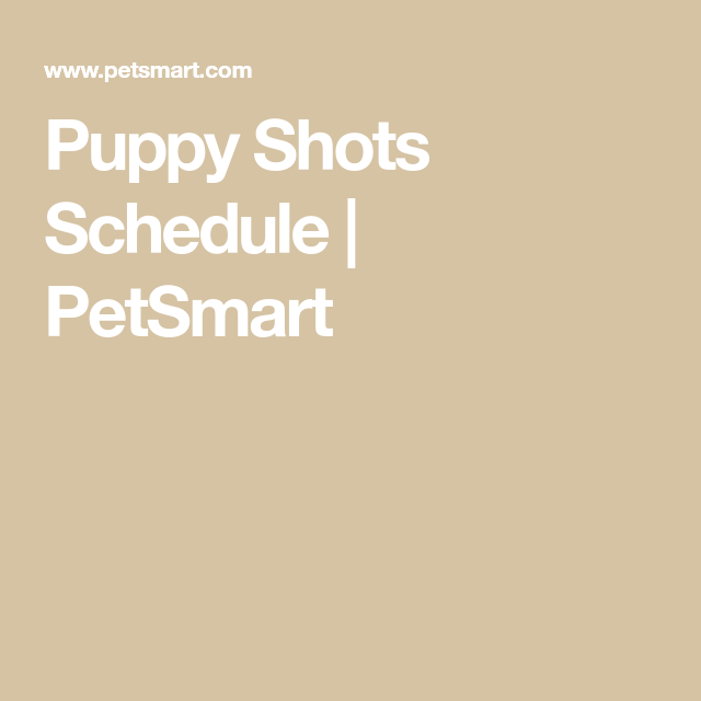 Pin On Puppy Care