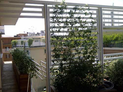 Frangisole per terrazzo con piante | nel mio terrazzo | Pinterest