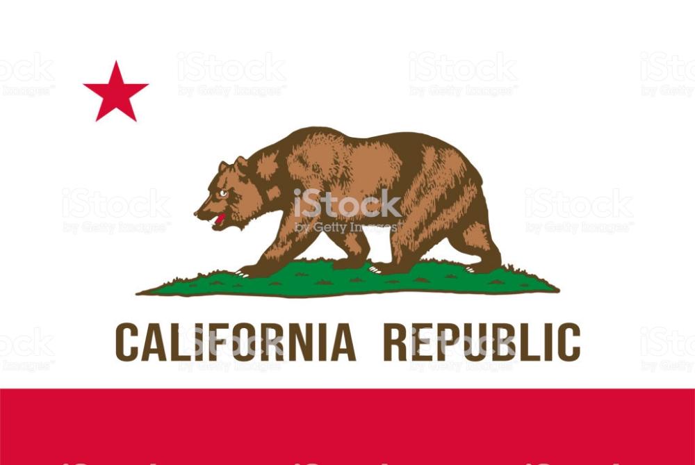 California State Flag Vector Illustration California Republic Flag California State Flag California Flag