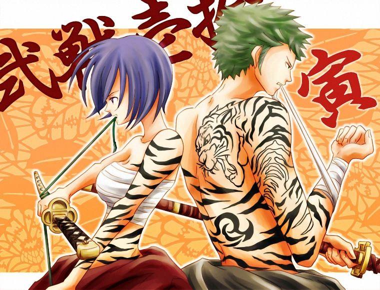 Zoro And Tashigi Tashigi and Zoro Tiger...