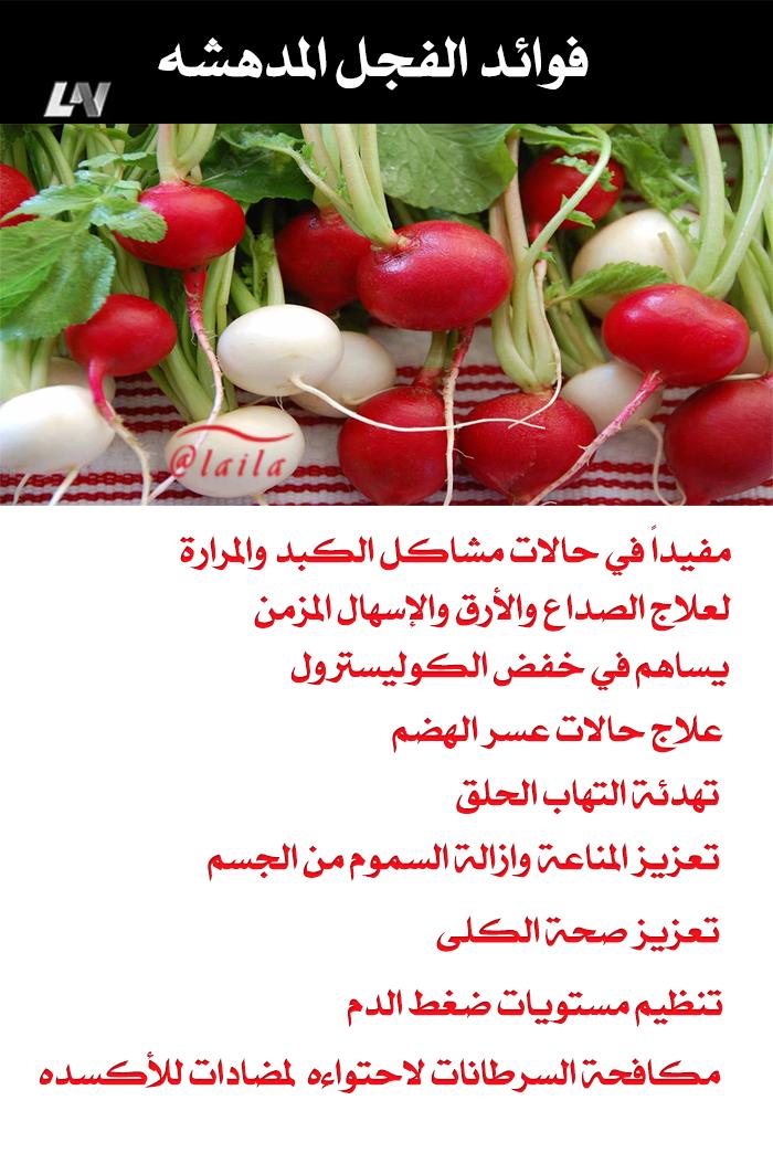 فوايد الفجل Health Facts Food Health Food Health Fitness Nutrition