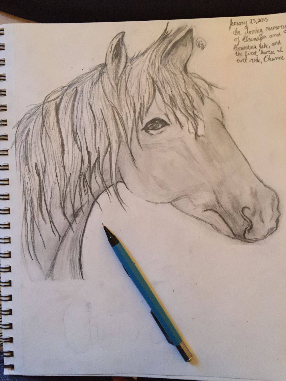 A horse I drew today. Please let me know what you think! :)