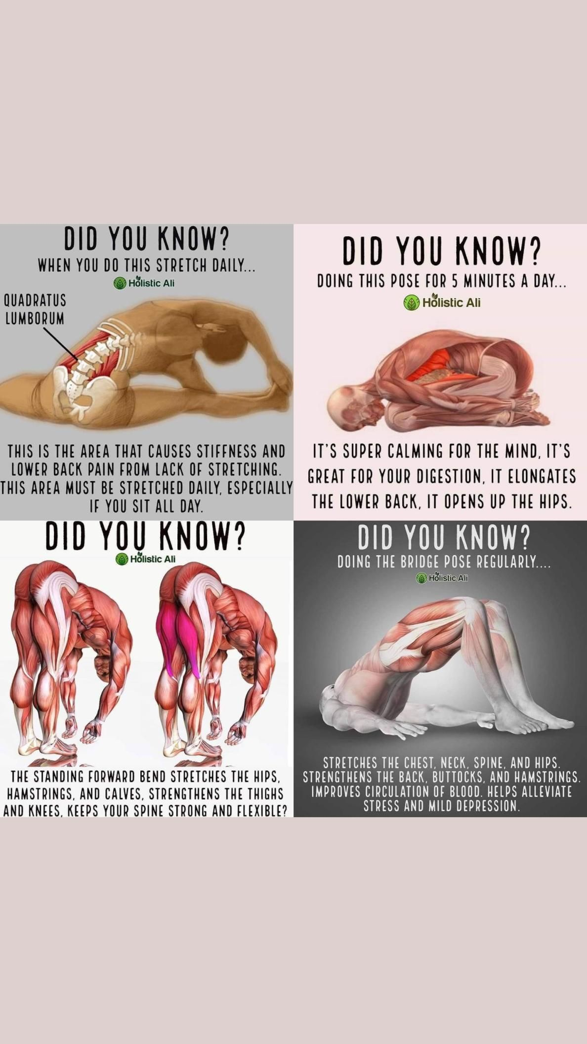 Did You Know ?