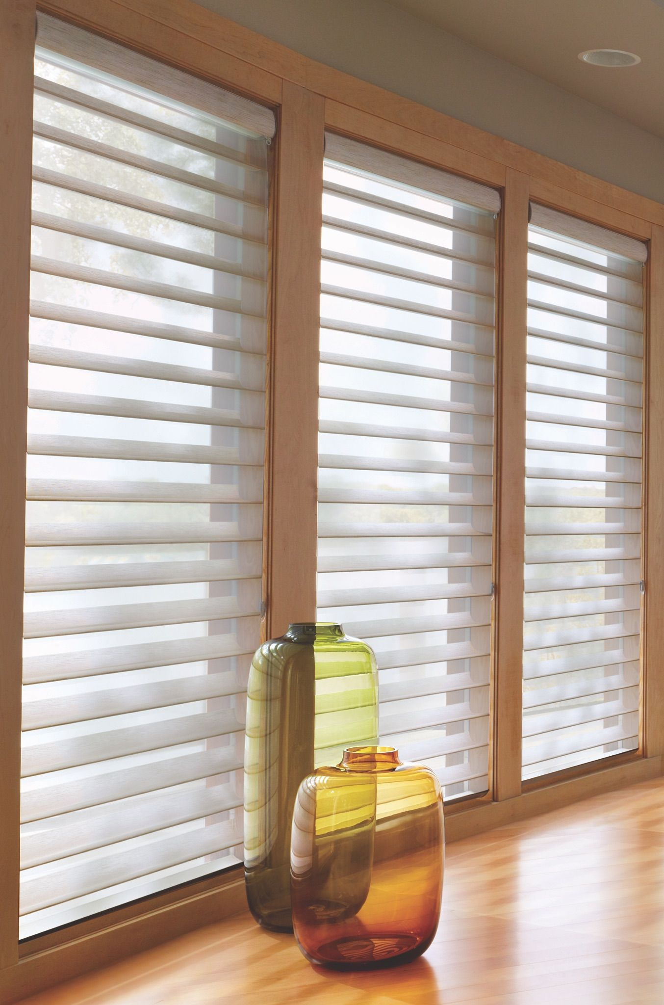 Silhouettes Give You The Option Of View Through And Privacy When Closed Not Only Do They Look Living Room Blinds Contemporary Window Treatments Modern Blinds